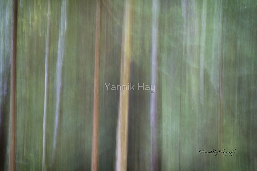 Symphony in green 4 by Yannik Hay
