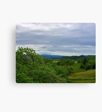 Pleasant Pastures Canvas Print