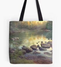 Spring at the Duck Pond Tote Bag