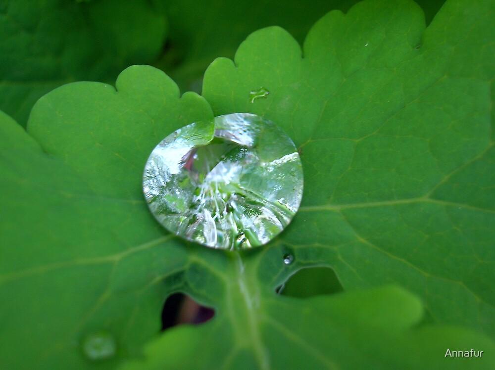 Water Diamond by Annafur