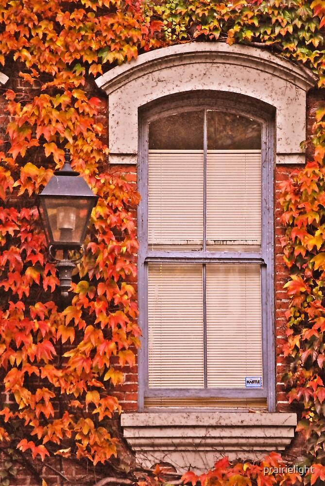 Autumn Portal by prairielight