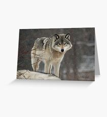 Dominant Wolf Greeting Card