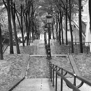 Escalier - Montmartre - Paris Black and White by Photograph2u