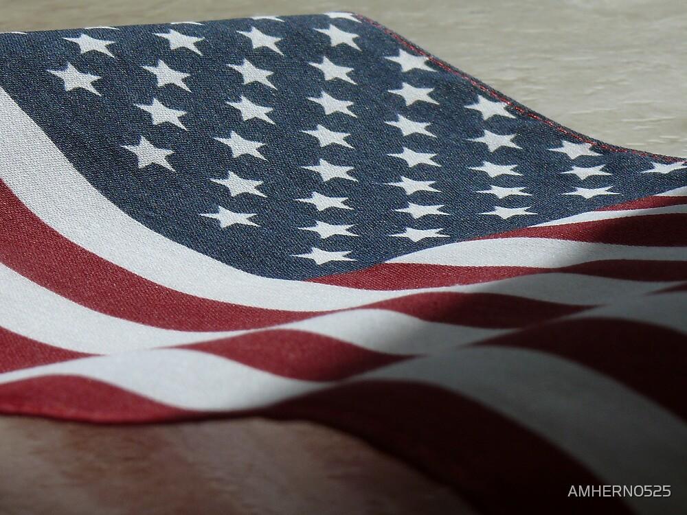 USA by AMHERN0525