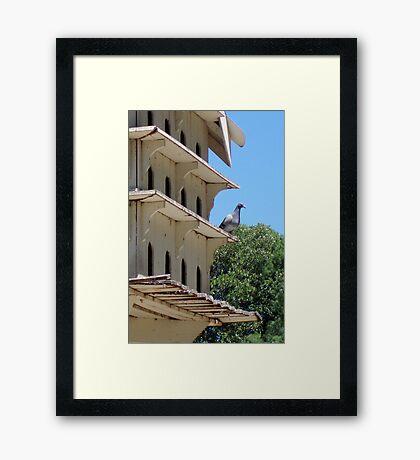 Verandah Viewing Framed Print