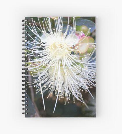 Starburst! Spiral Notebook