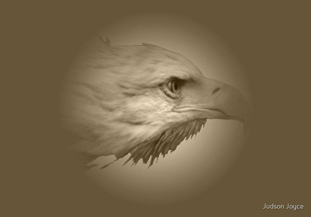 Gold Eagle by Judson Joyce