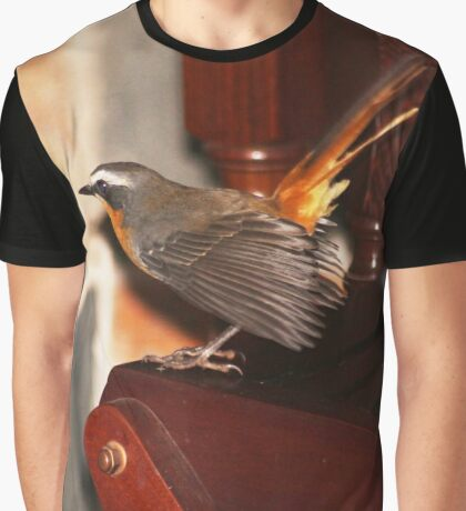 Robin in my house Graphic T-Shirt