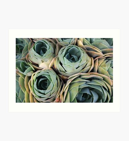 Tightly packed Art Print