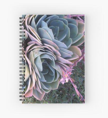 Autumn Echeveria imbricata Spiral Notebook