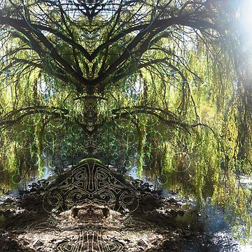 Weeping Willow Wonder by CWerk