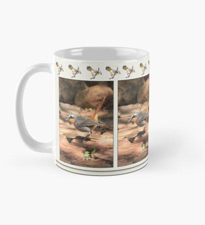 Cape Robin (Cossypha caffra) Mug