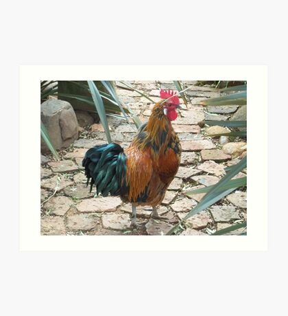 Farm talk - Half a beauty Art Print