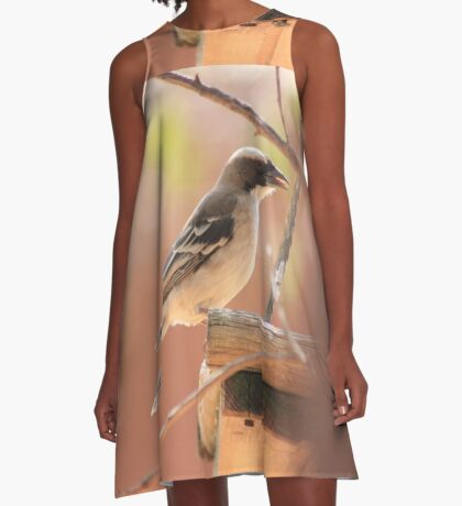White-browed Sparrow Weaver (Plocepasser mahali) A-Line Dress