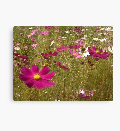 Remembering the Cosmos Canvas Print