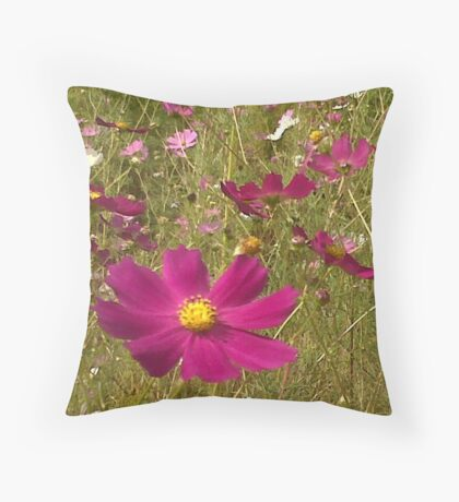 Remembering the Cosmos Throw Pillow