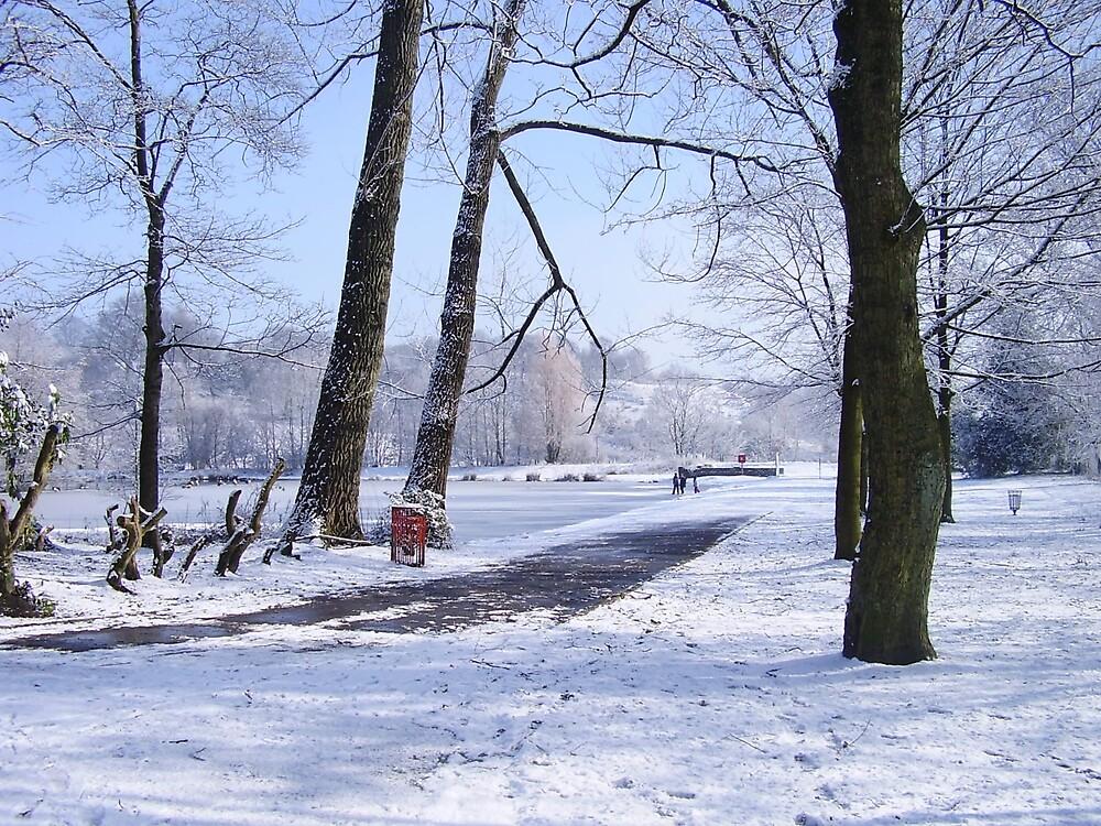 Snowy Walk by the Lake by sootyangel