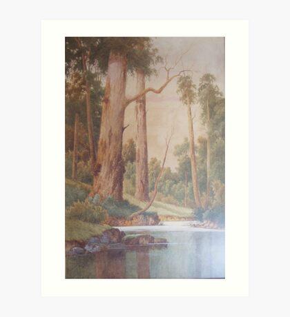 Wyong Creek by Gladstone-Eyre Art Print