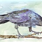 Crows are messengers - Coco by Maree Clarkson