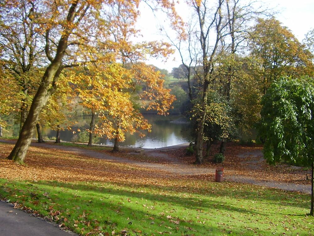 Autumn Walk in the Park by sootyangel