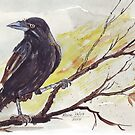 Crow on a bough - Coco by Maree Clarkson