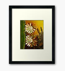 Night-blooming cereus Framed Print