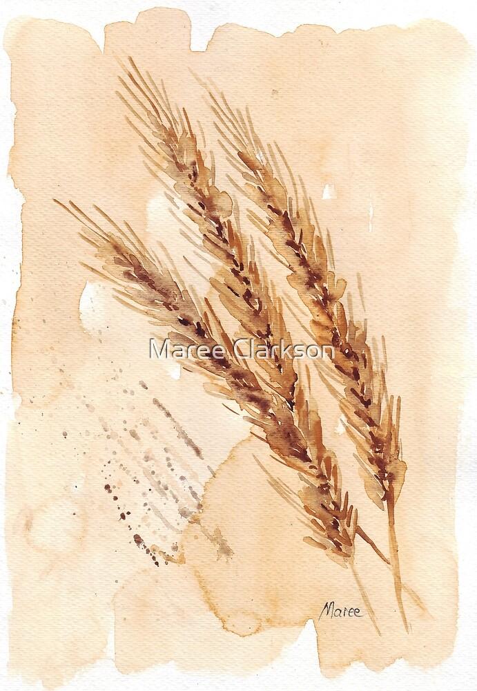 Golden Wheat - Botanical illustration by Maree Clarkson