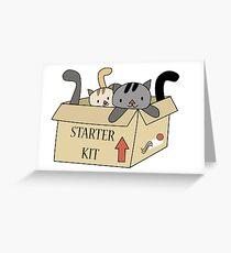 Crazy Cat Lady Starter Kit Greeting Card