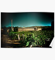 Penfold Winery Poster