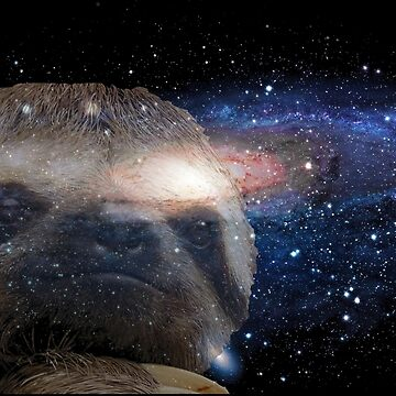 Sloth space by pinestopalms