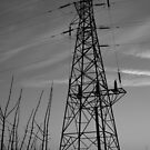 Sihouetted Pylon by Tony Moore