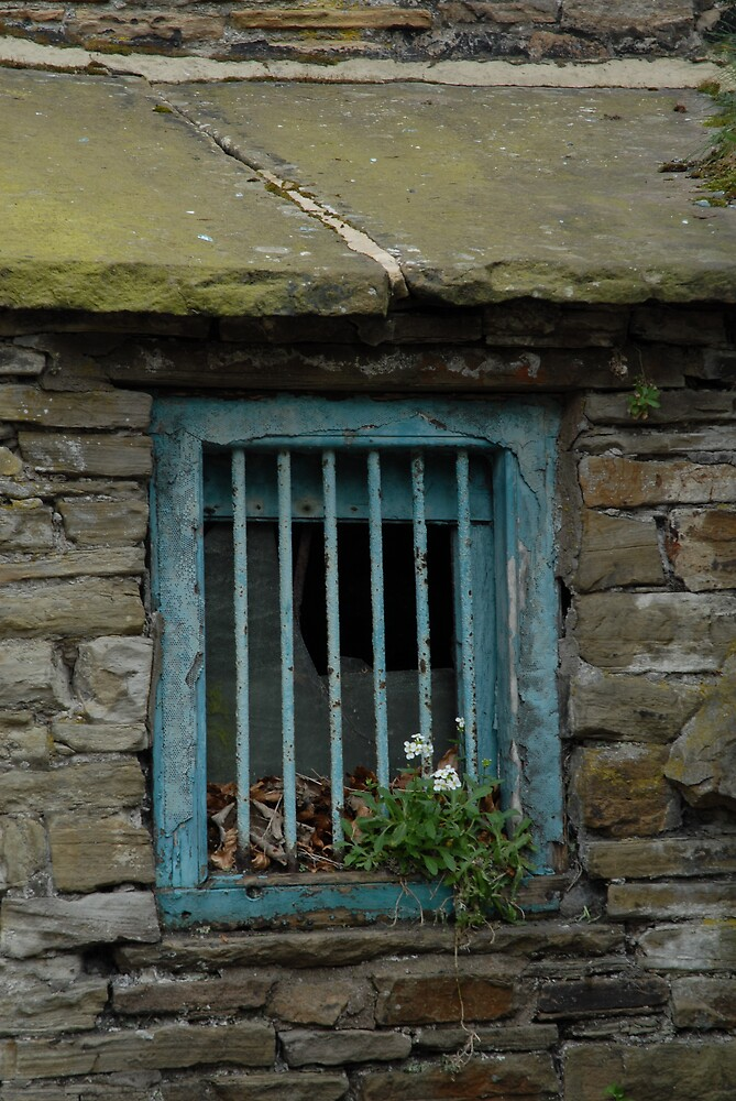 Rustic Window by Danielle Boskamp