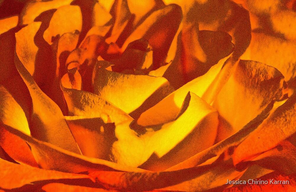 film grain yellow rose by Jessica Chirino Karran