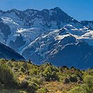 Mt. Cook from the Aoraki National Park, New Zealand #2 by Elaine Teague