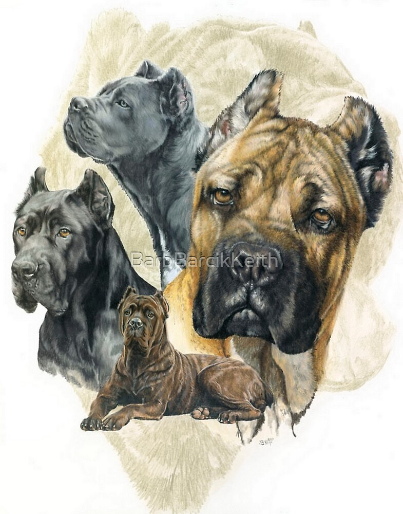Cane Corso Medley by BarbBarcikKeith