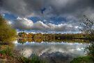 Autumn Lake by Nigel Bangert