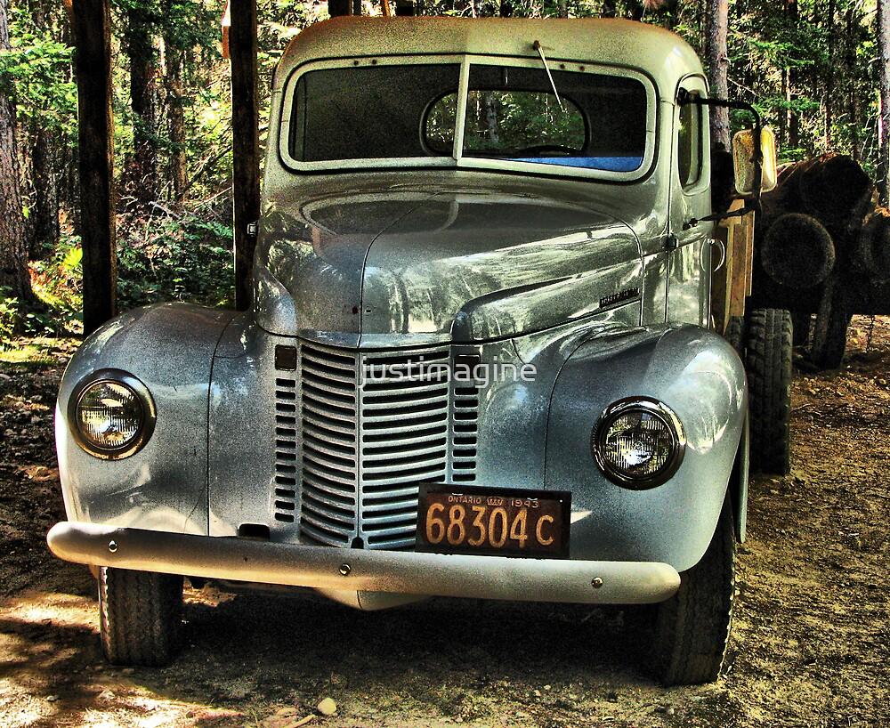 Logging Truck  by justimagine