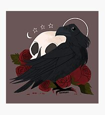 Familiar - Raven Photographic Print