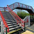 The Station Steps at Llanfairpwllgwyngyllgogerychwyrndrobwllllantysiliogogogoch  by trish725