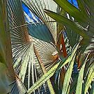 Palm Tree Composition by DAdeSimone