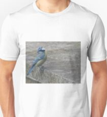 Blue tit perched on a wall Unisex T-Shirt