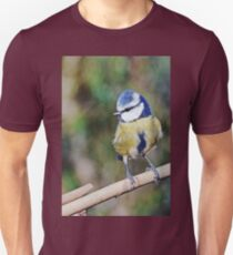Re series published since the first time too bright ... !! 11  (c)(h) Birds by Olao-Olavia / Okaio Créations fz 1000 T-Shirt