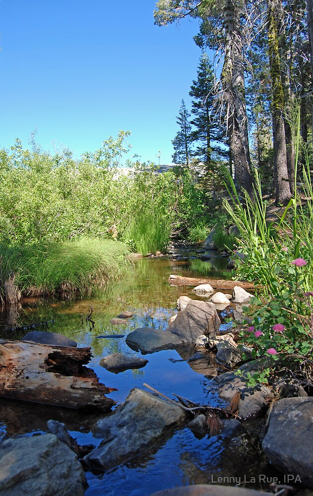 Carr-Feeley Creek by Lenny La Rue, IPA