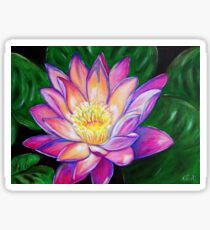 Painted Pink Water Lily Sticker