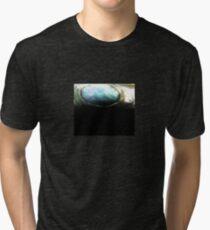 Abalone Tri-blend T-Shirt