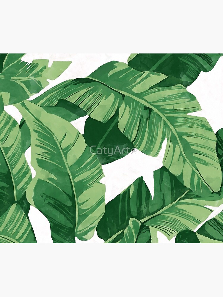 Tropical banana leaves II by CatyArte
