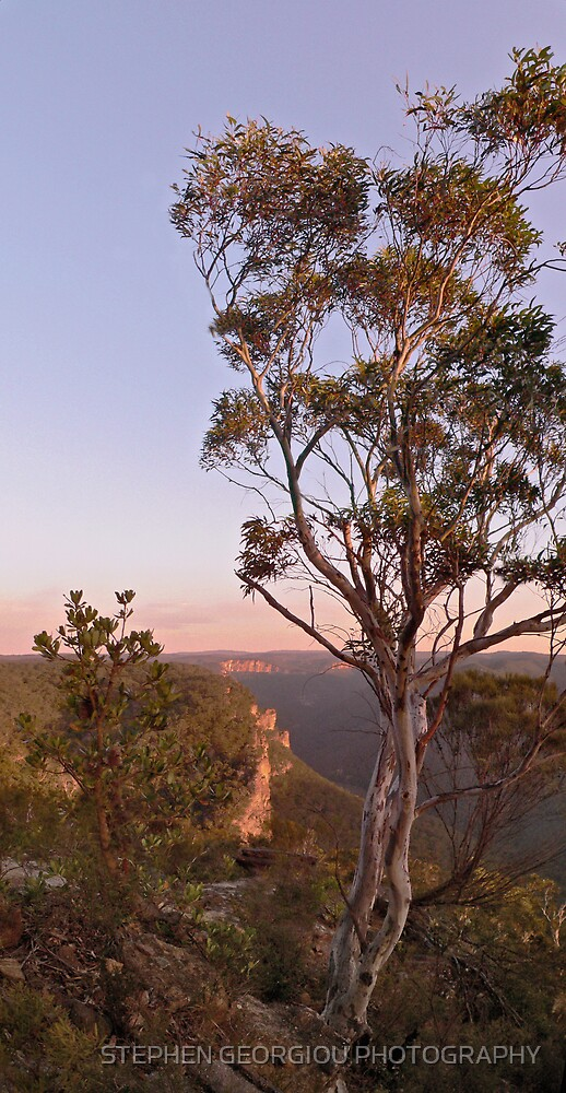 Sunrise Cliffline towards Bell from Anvil Rock Track by STEPHEN GEORGIOU PHOTOGRAPHY