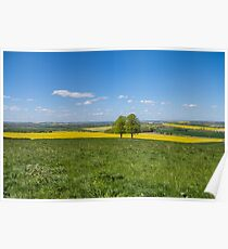 Countryside in spring, Sutton Scarsdale Hall Poster