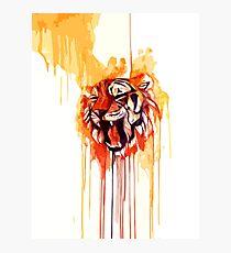Roar I Photographic Print