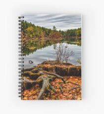 Large tree roots in autumn landscape Spiral Notebook